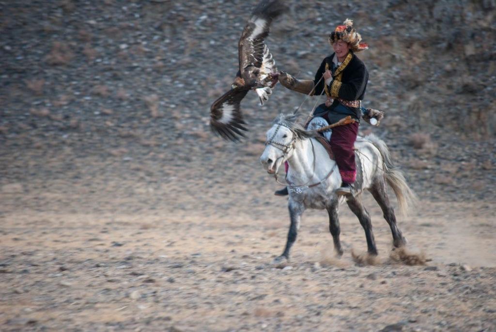 Eagle hunter riding fast