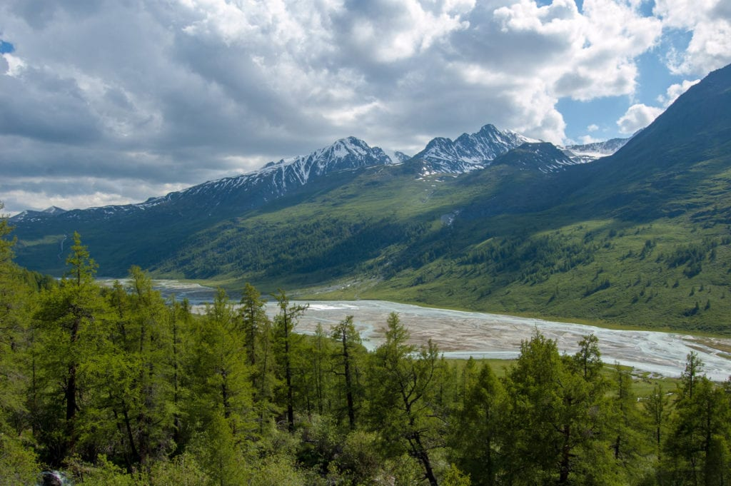 Forest and frozen river at altai mountains