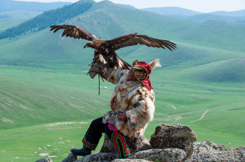 (Main) Electric Lime-Big Mongolia-0929