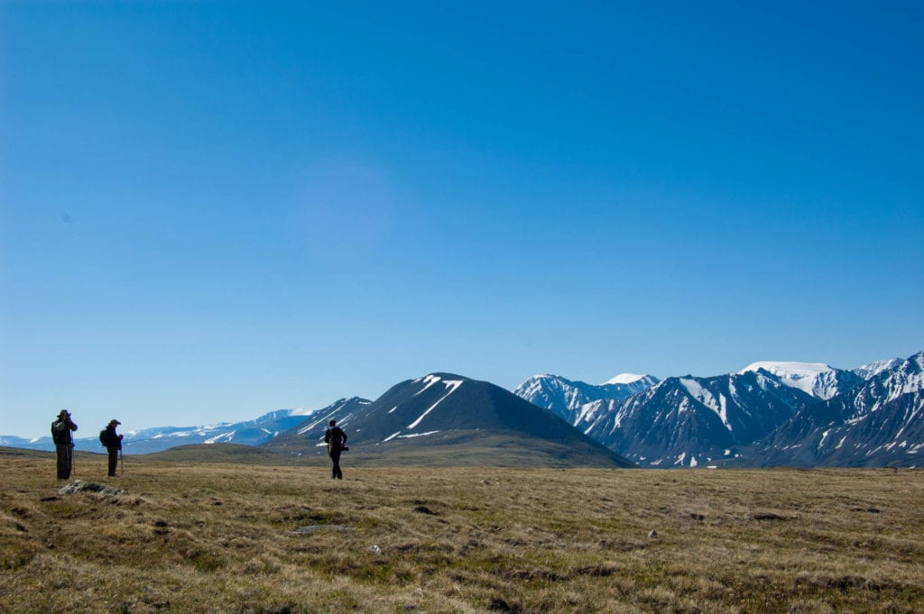 photographing altai